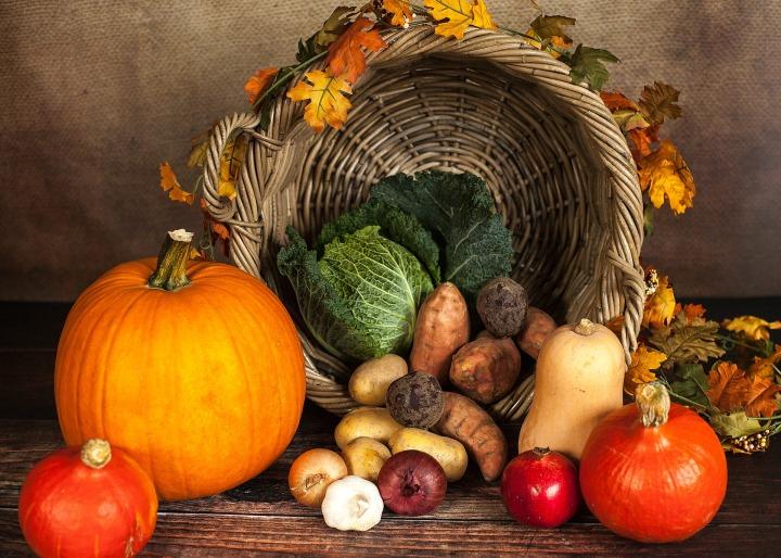 Dia de Ação de Graças – vocêcomemora?